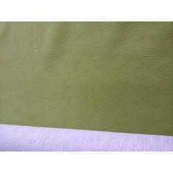 Carabu zelená
